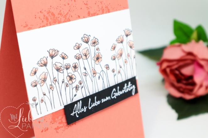 Stampin' Up! Painted Poppies Zum Geburtstag für dich Sale A Bration 5 mitliebeundpapier.wordpress.com