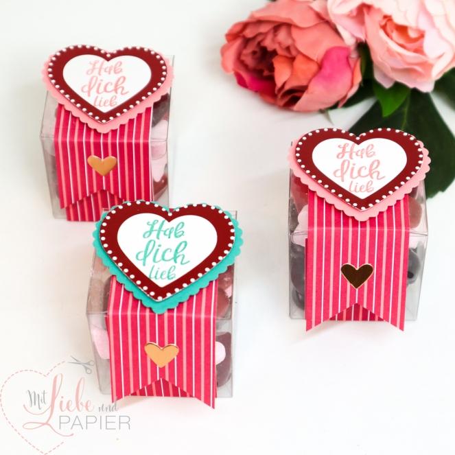 Stampin' Up! berlin Von Herzen Valentinstag basteln DIY Geschenk Süßigkeiten 1 mitliebeundpapier.wordpress.com